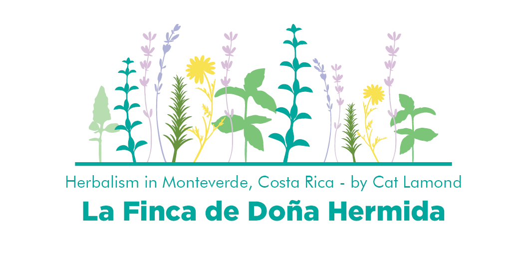 Doña Hermida by Cat Lamond Header.png