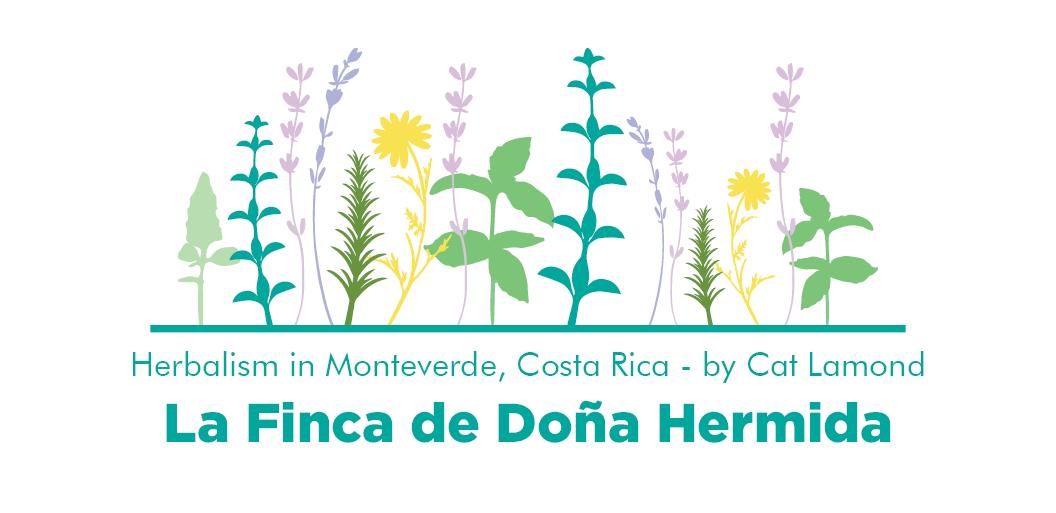 Doña Hermida by Cat Lamond Header.png