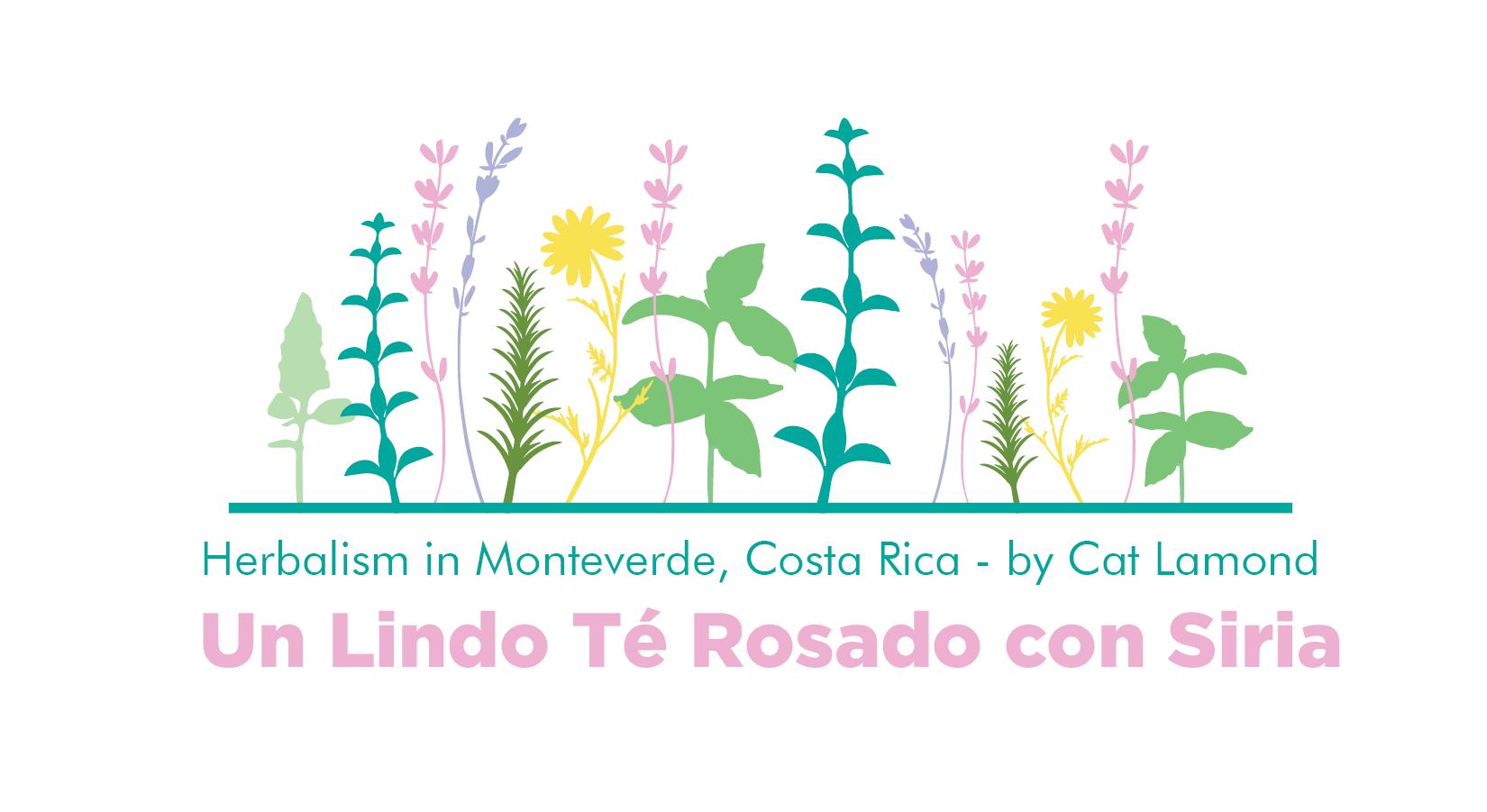 Header Te Rosado2.png