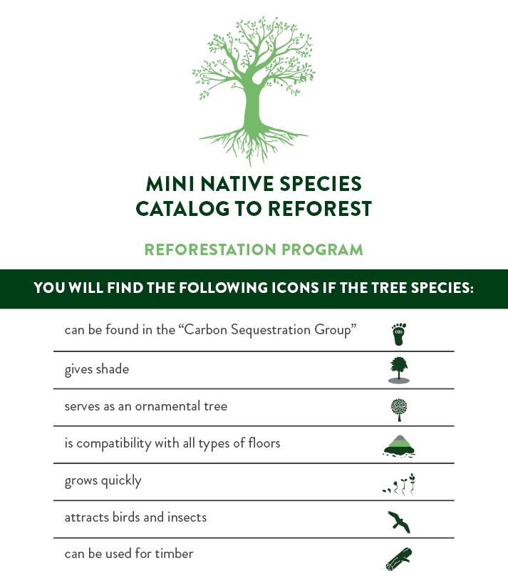 Booklet Reforestation Program ENG.png