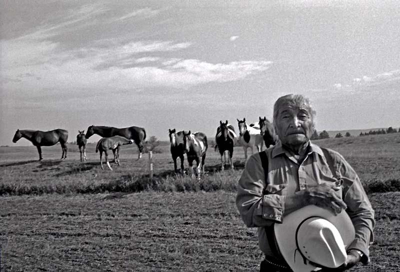 Johnny & More Horses