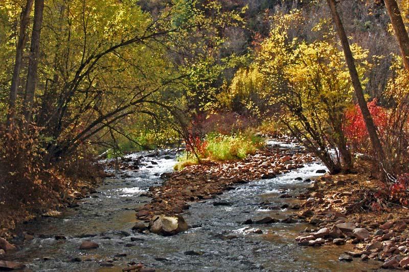 Brush Creek Impressions