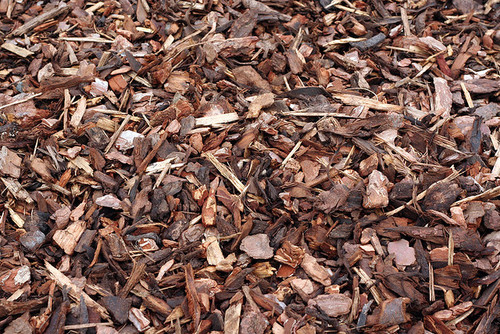 What Is The Best Mulch Benefits And Drawbacks Of Various Materials