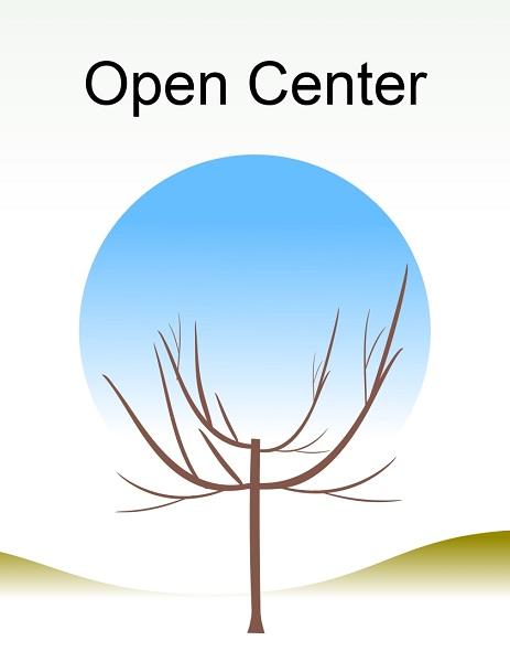 Open Center.jpg