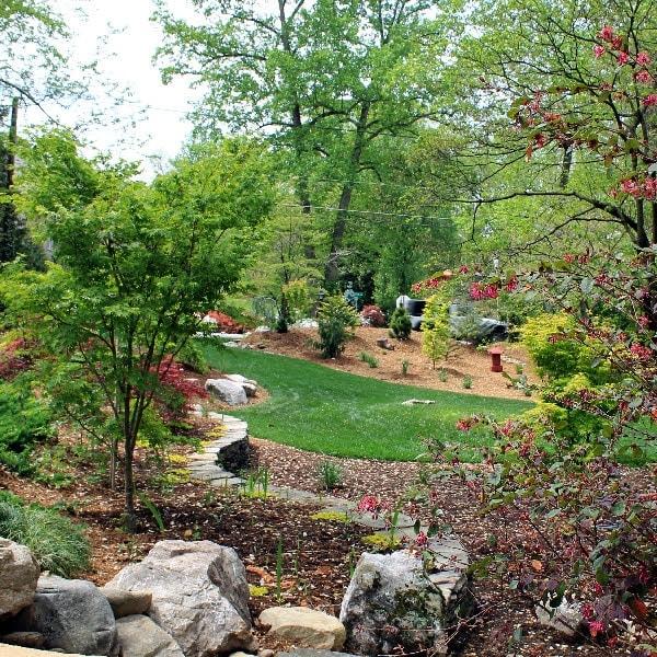 Landscape Design & Installation -