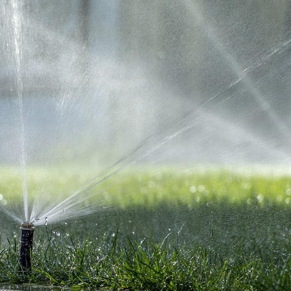 Irrigation & LightingServices -