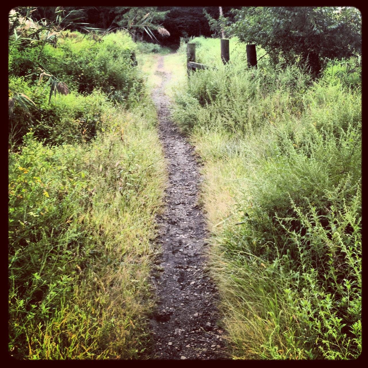 West Essex Trail
