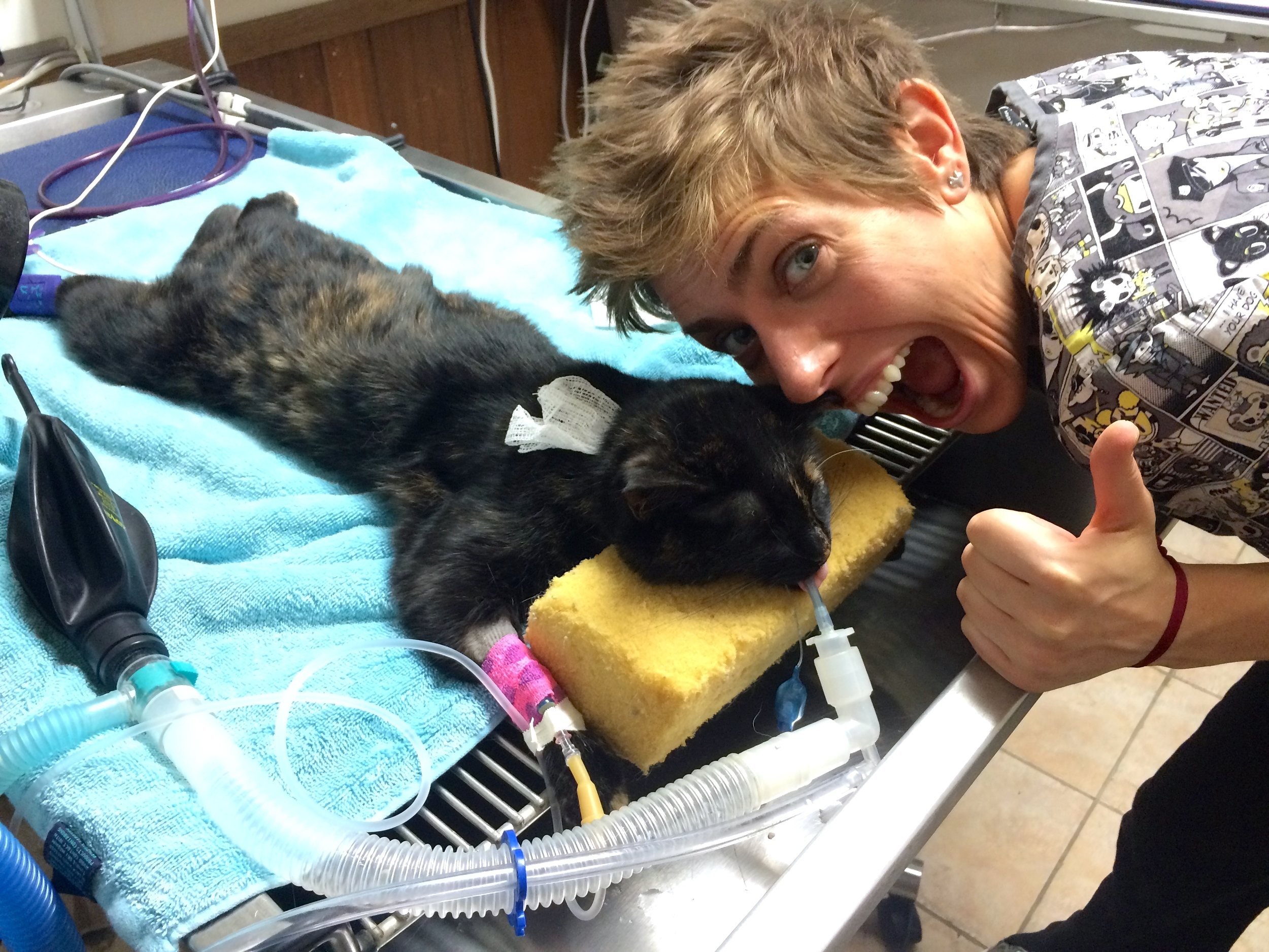 Cathy helping with a dental on Dr. Liz's cat at East Towne Pet Clinic