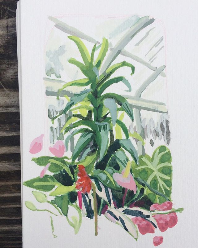 #pleinair took a break to sit in the warm jungly conservatory and paint their weird assemble of houseplants