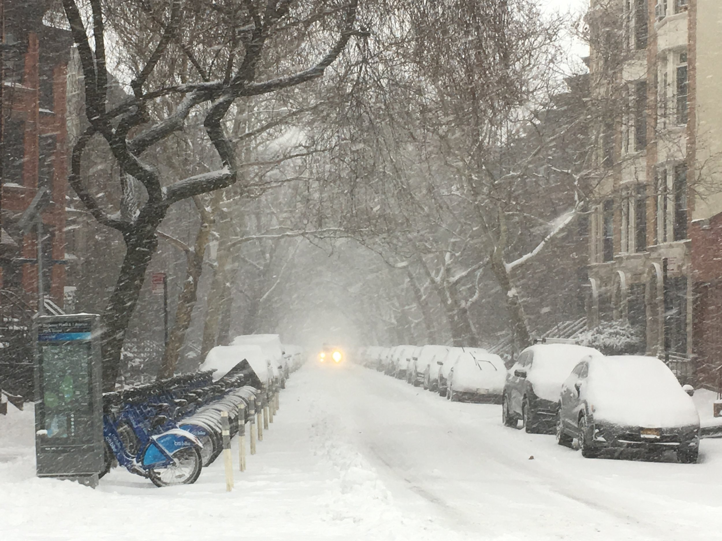 Berkeley Place. Park Slope, Brooklyn.