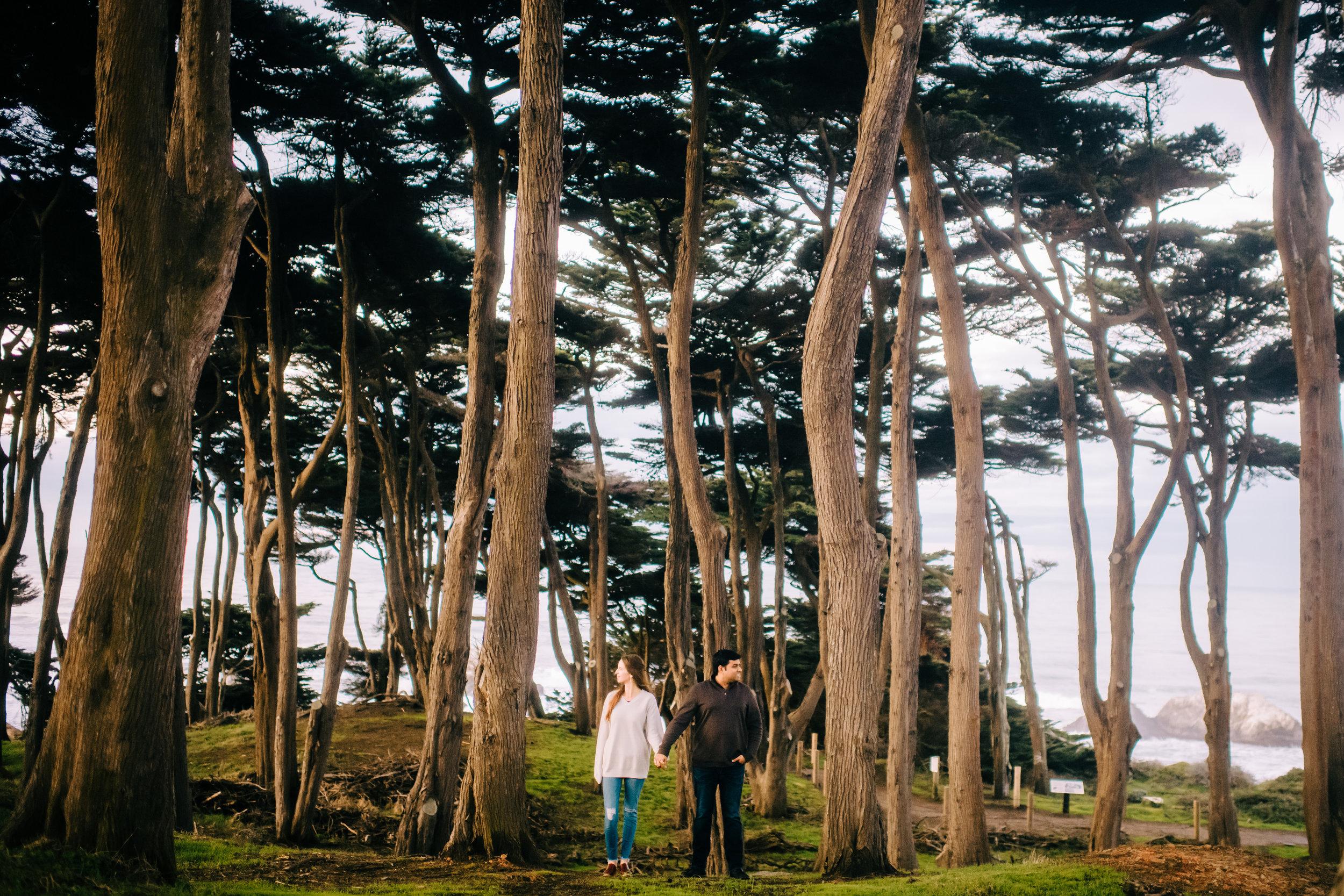 san francisco oakland bay area california sf yosemite sutro baths lands end sf  nontraditional wedding photographer -26.jpg