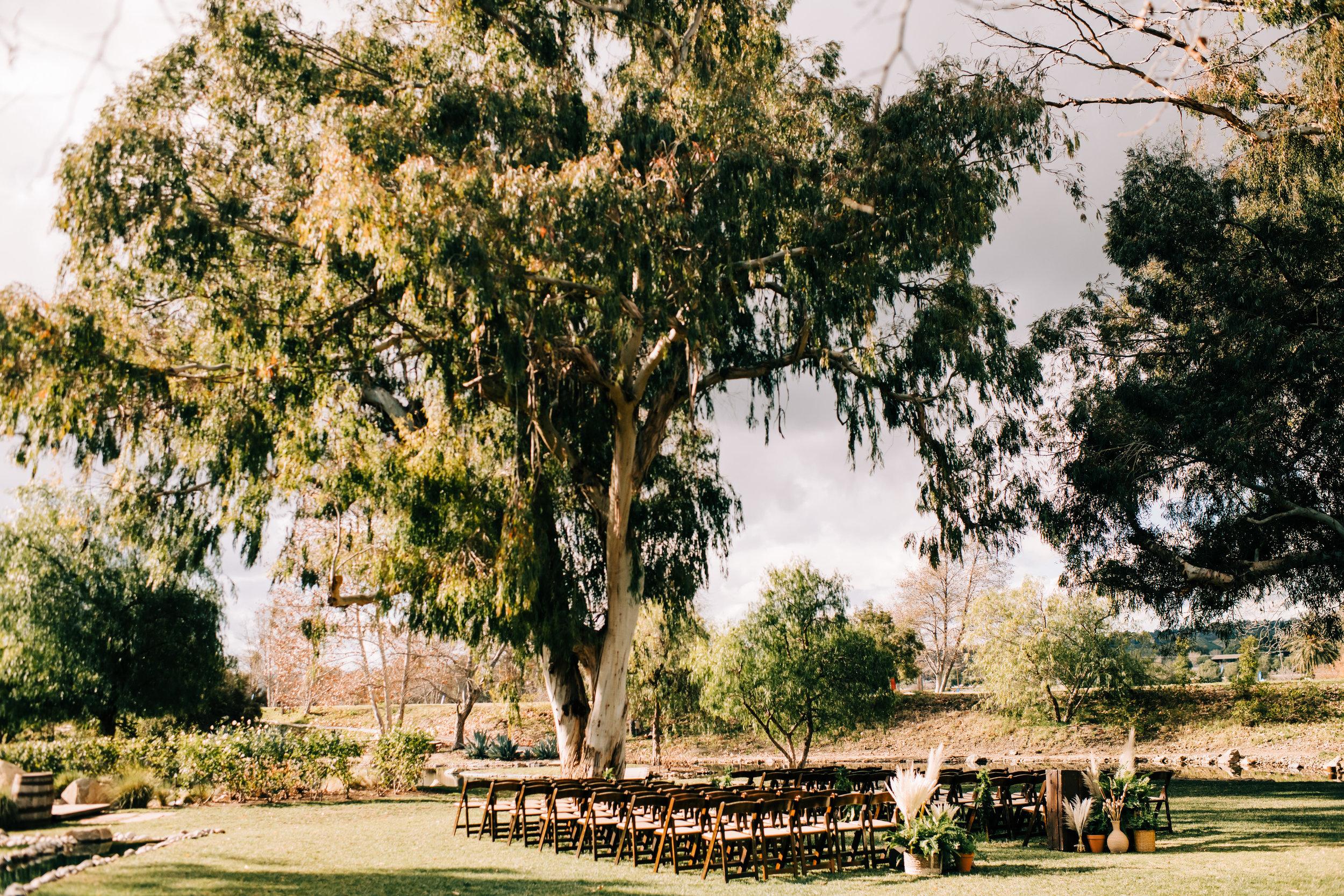 bay area nontraditional wedding photographer southern california boho wedding love light magic san francisco oakland northern california-264.jpg