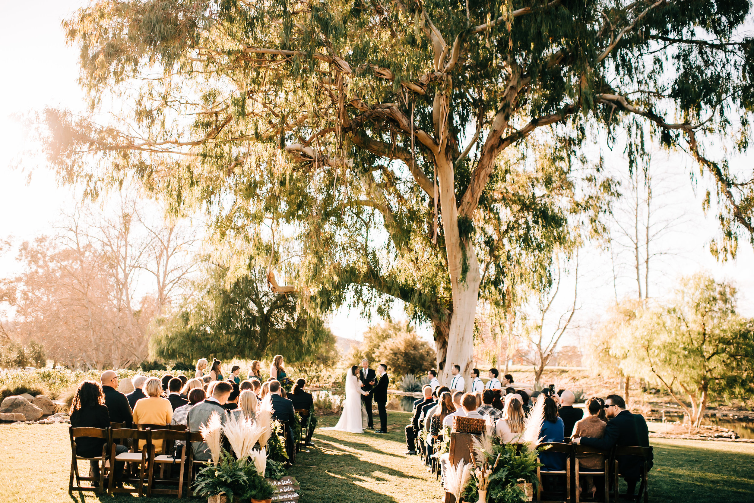 bay area nontraditional wedding photographer southern california boho wedding love light magic san francisco oakland northern california-523.jpg