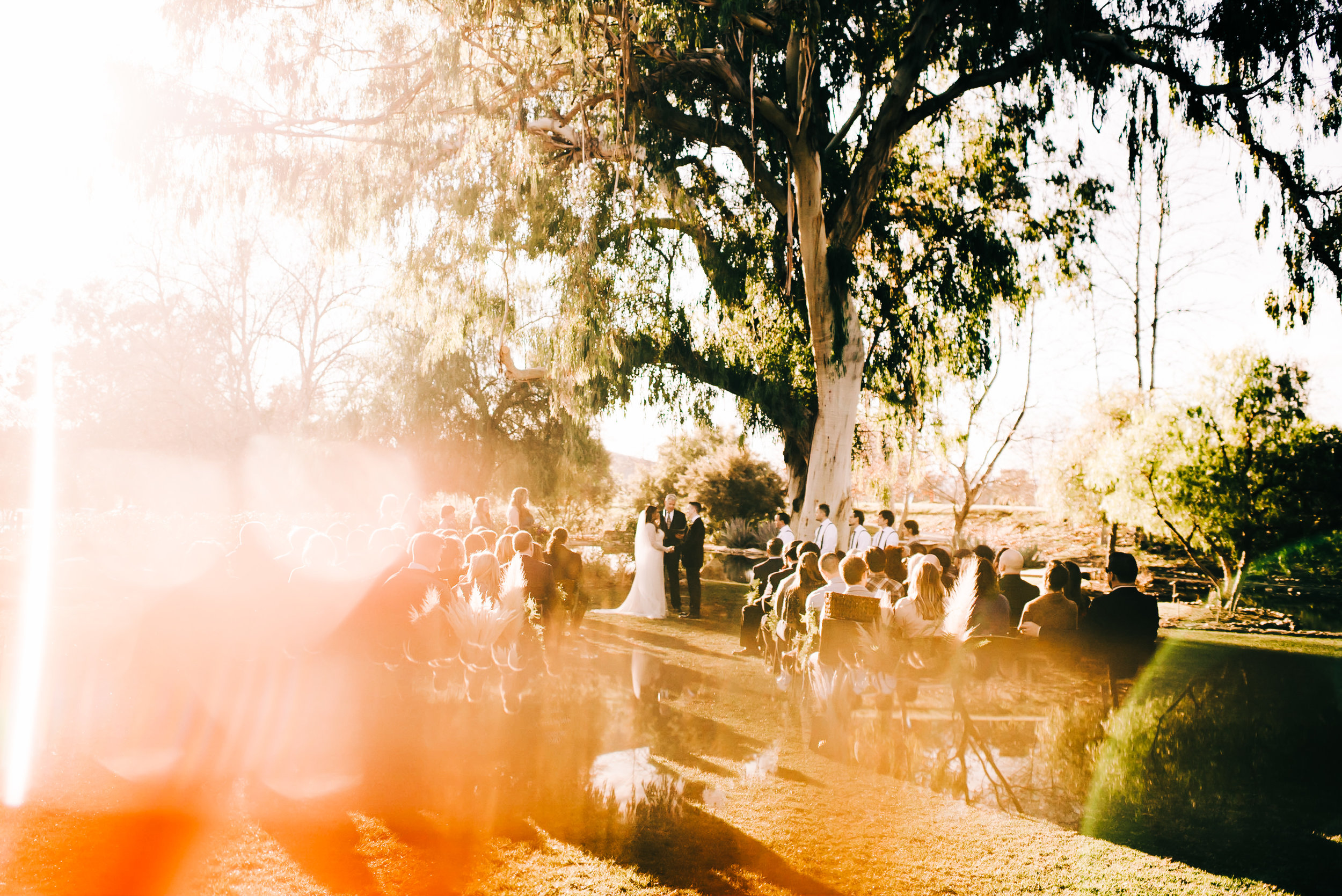 bay area nontraditional wedding photographer southern california boho wedding love light magic san francisco oakland northern california-525.jpg