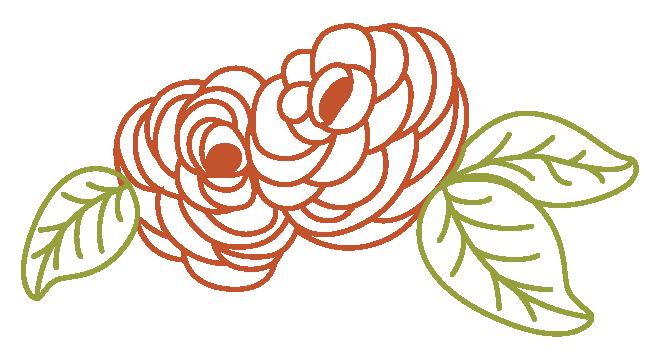 Ranunculus Flowers.png