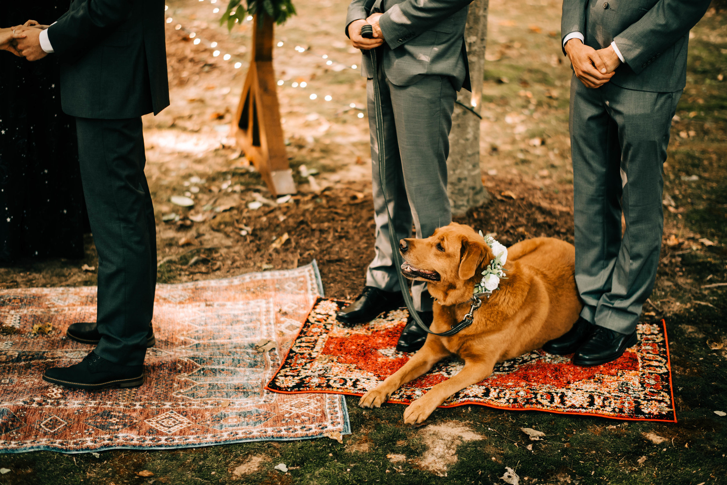 atlanta backyard wedding bay area oakland san francisco engagement wedding nontraditional fun creative eclectic photographer magic-617.jpg