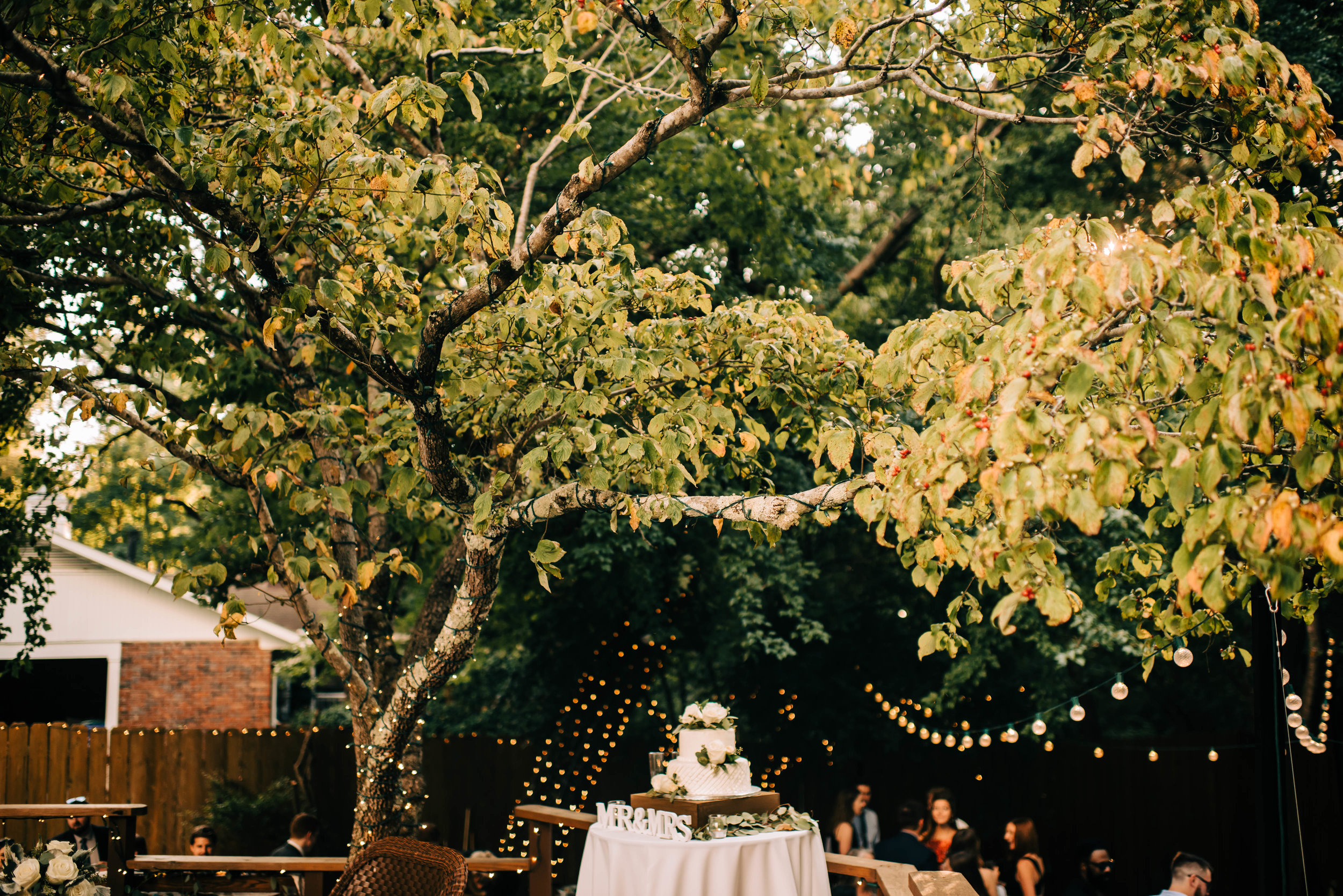 atlanta backyard wedding bay area oakland san francisco engagement wedding nontraditional fun creative eclectic photographer magic-903.jpg