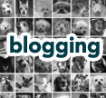 click to read advice on blogging
