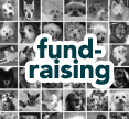 click to read advice on fundraising