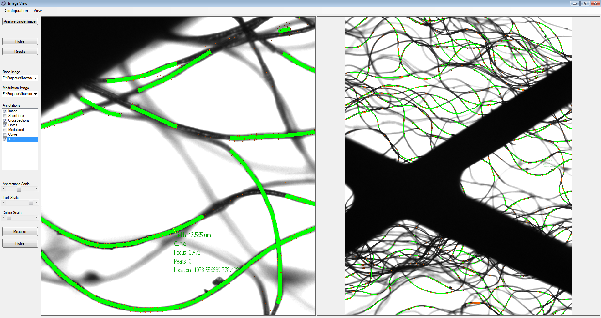 The dark lines are the wool, and green lines are where the software has identified a clear length of fibre to measure