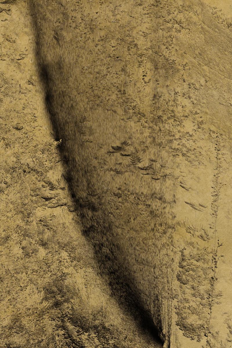 NYX_#17 albarran cabrera de foscherari .jpg