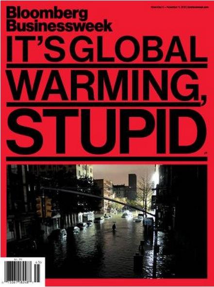 It's global warming stupid!.jpg