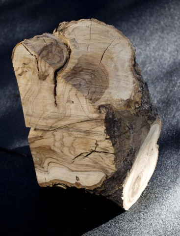 Olivewood Stage 1-reduced.jpg