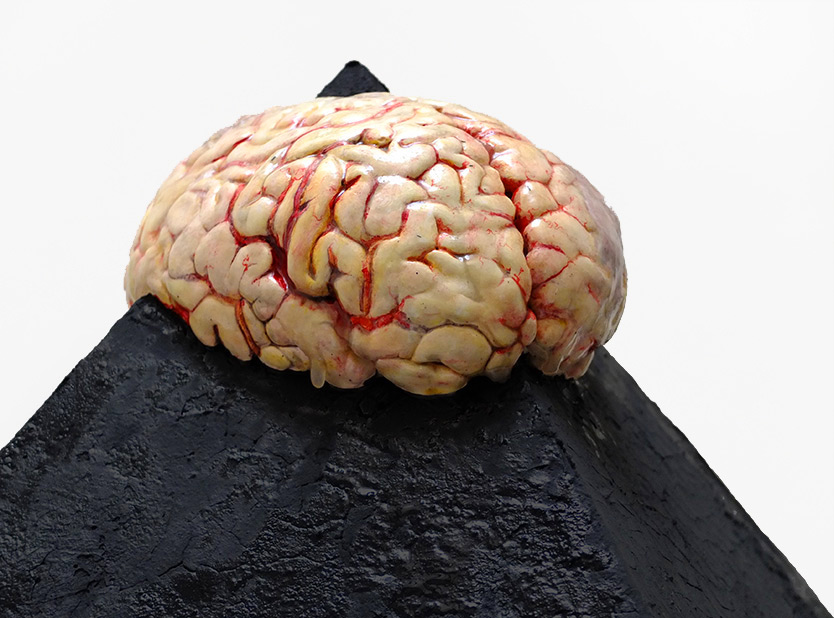 Pyramid Brain, 2012