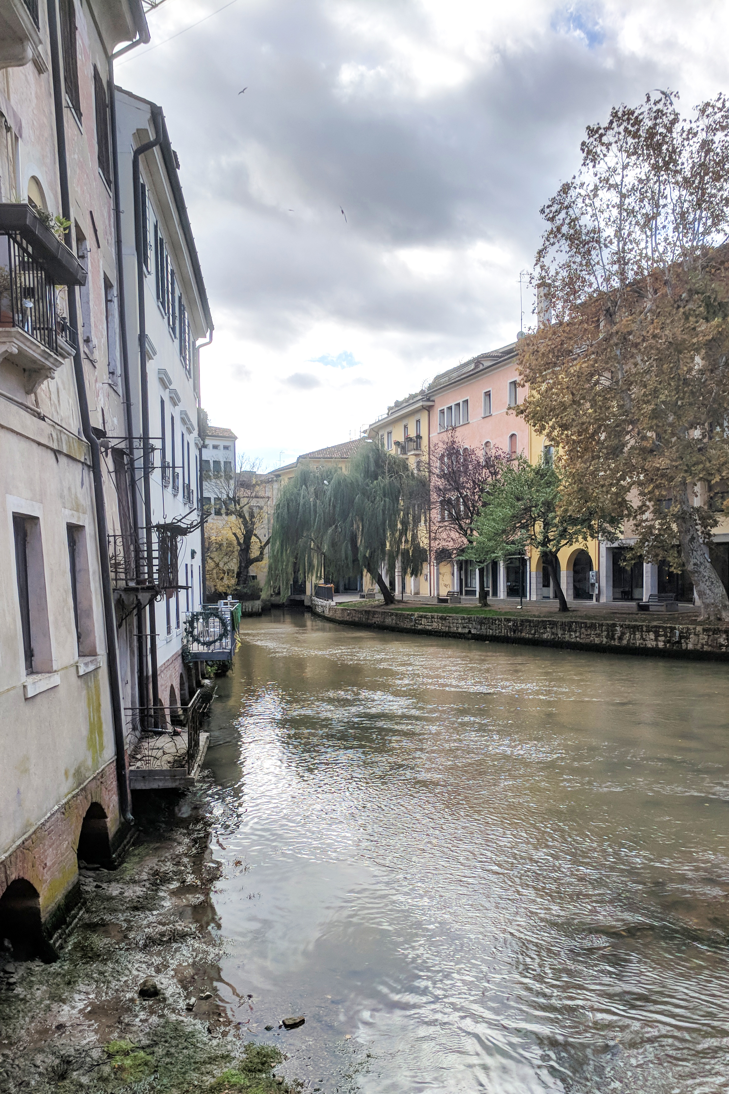 Treviso Italy is built around canals like Venice but is completely different from Venice. Jamie House Design