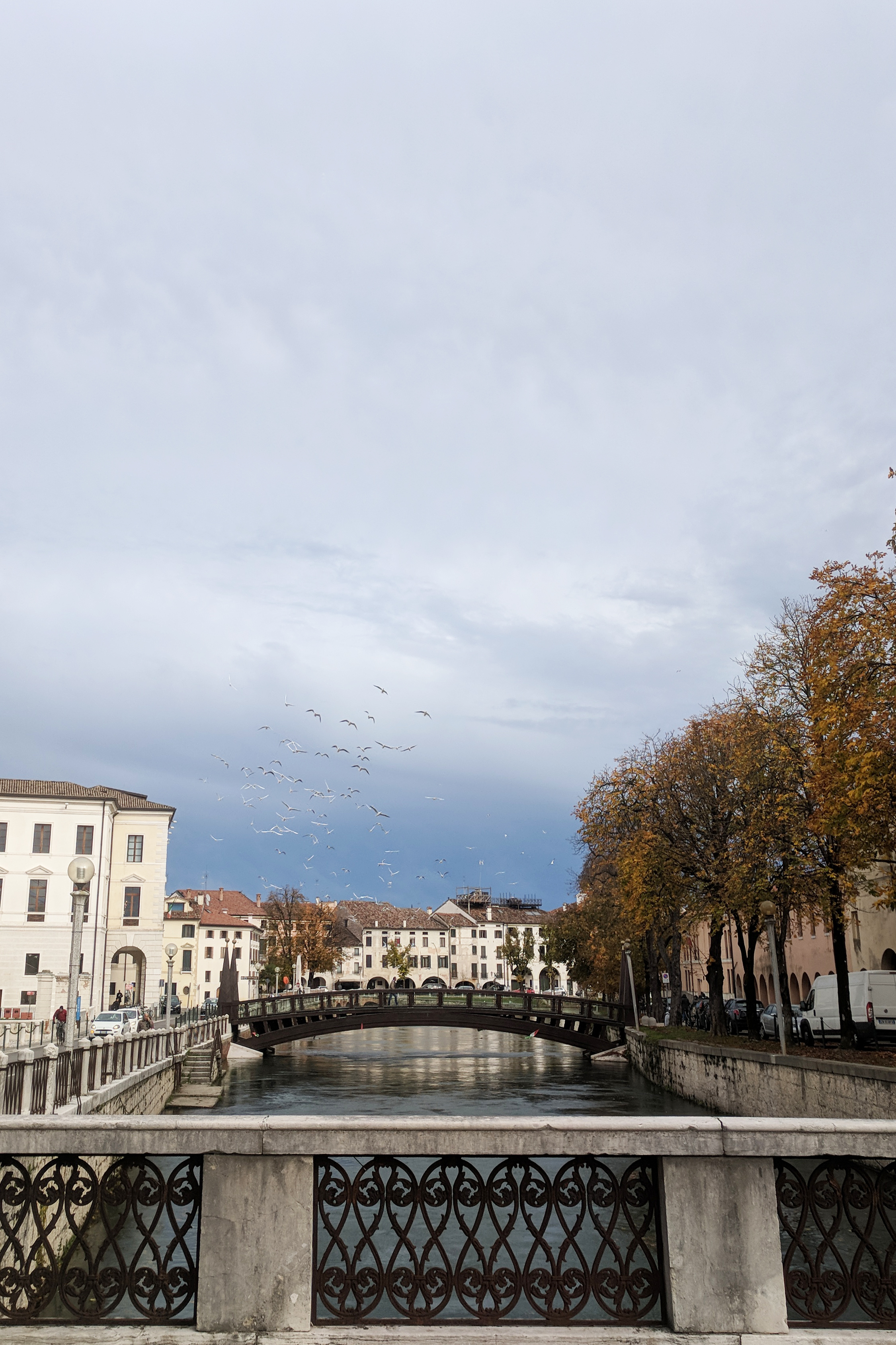 Canal in Treviso Italy with birds flying over. Image by Jamie House of Jamie House Design