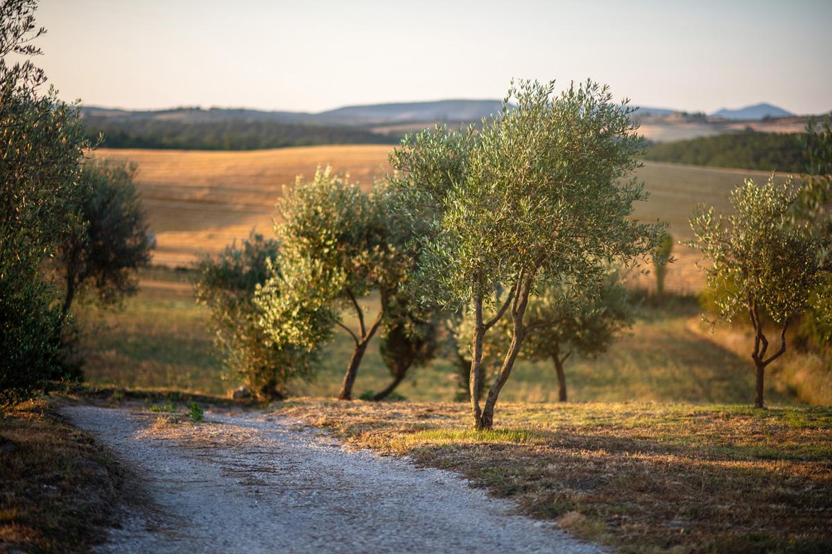 200-ninapomeroyphoto-tuscan-villa-property-photography.jpg