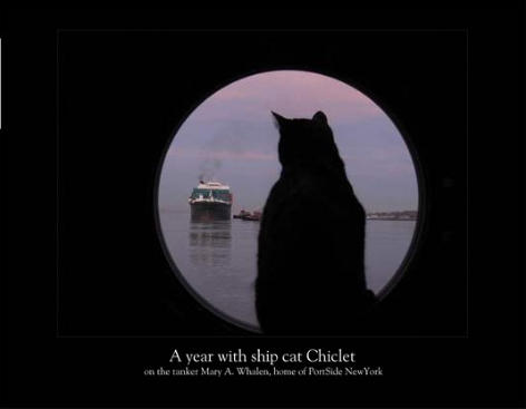 """$200 donation - """"year of Chiclet"""" photo calendar, 12 months of classic feline moments on a ship and pier, shot by award-winning photographer Carolina Salguero.  Calendar Preview                    /* Style Definitions */  table.MsoNormalTable {mso-style-name:""""Table Normal""""; mso-tstyle-rowband-size:0; mso-tstyle-colband-size:0; mso-style-noshow:yes; mso-style-parent:""""""""; mso-padding-alt:0in 5.4pt 0in 5.4pt; mso-para-margin:0in; mso-para-margin-bottom:.0001pt; mso-pagination:widow-orphan; font-size:10.0pt; font-family:""""Times New Roman""""; mso-ansi-language:#0400; mso-fareast-language:#0400; mso-bidi-language:#0400;}"""