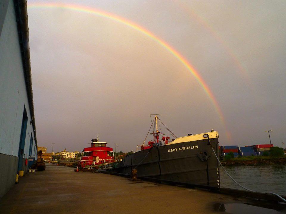 Mary Whalen rainbow.jpg