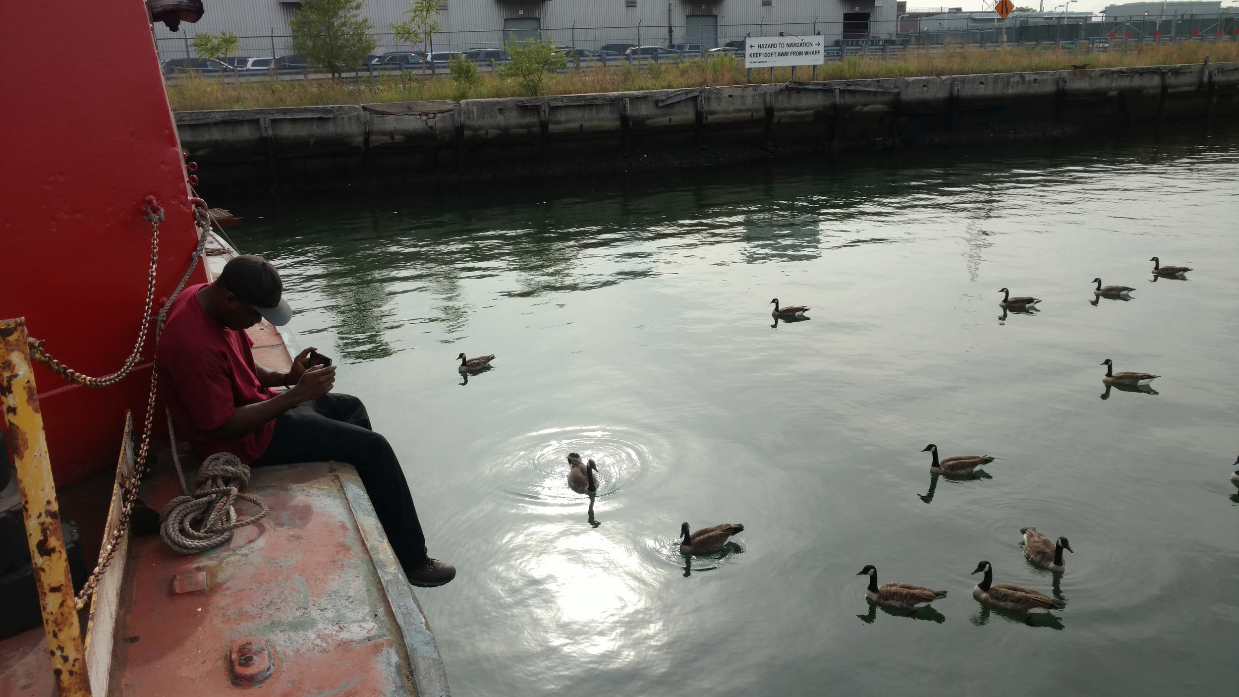 Osiris mosley taking a break and photographing geese and large schools of fish under them