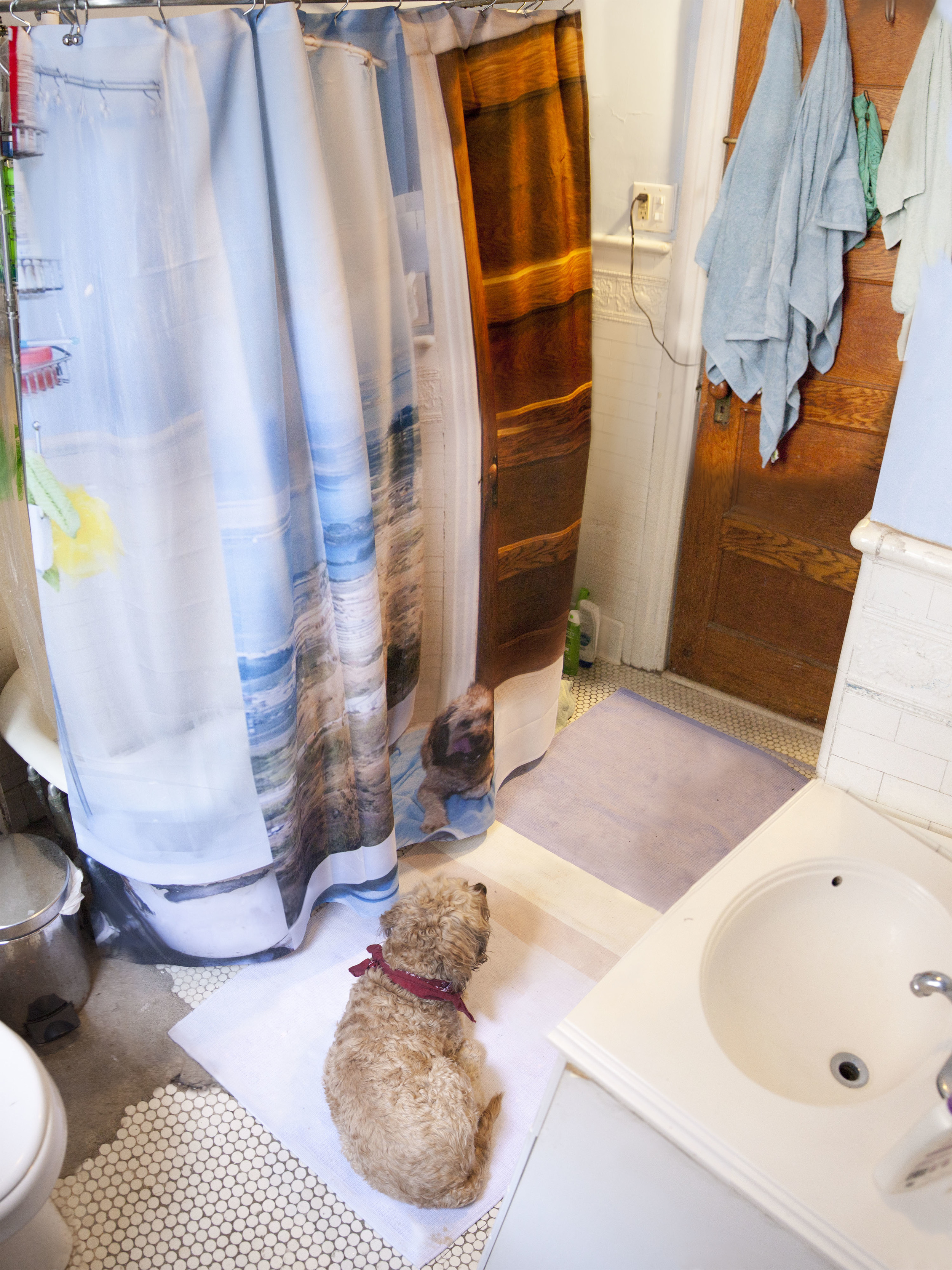 showernewprint.jpg