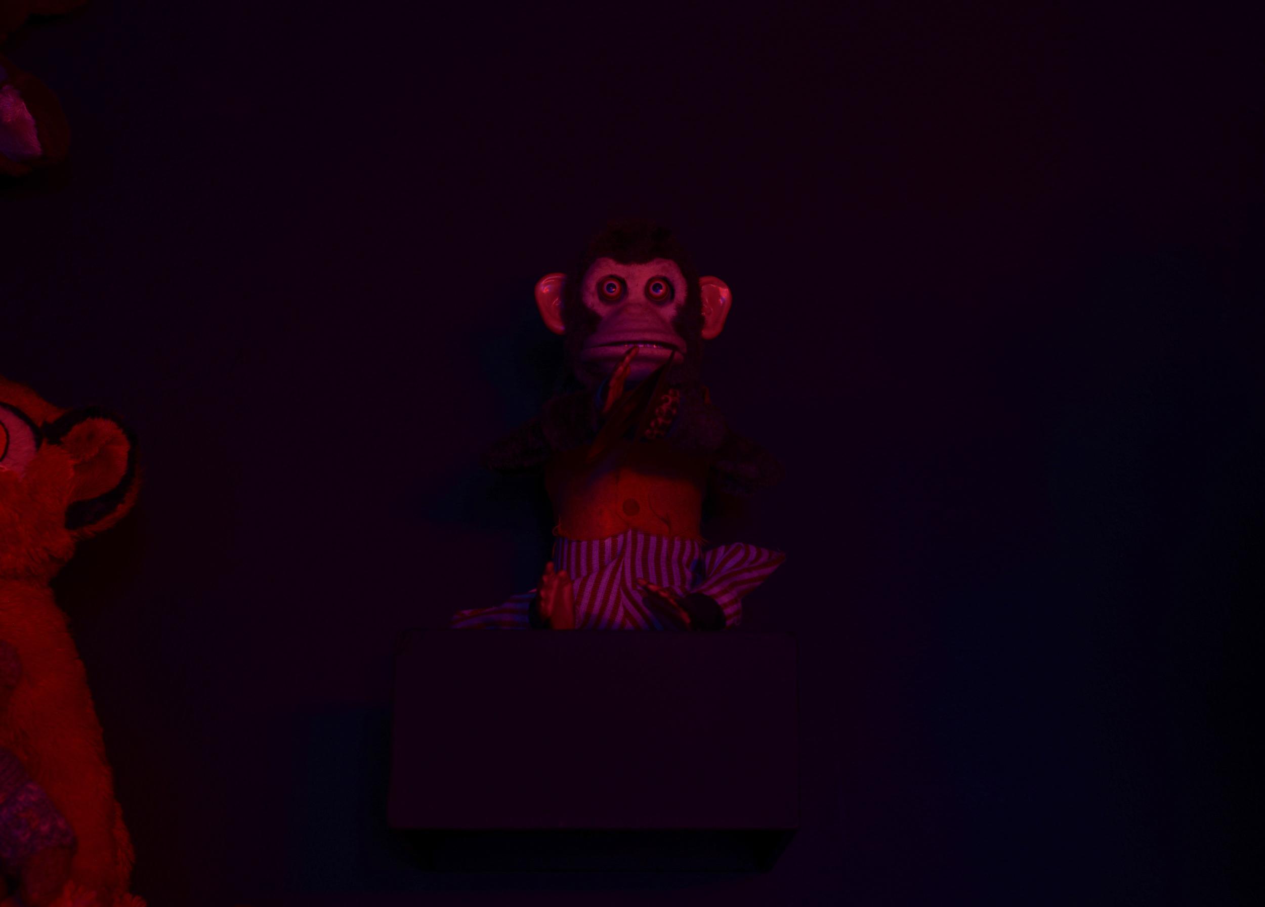 Dark-Rooms-Monkey.jpg