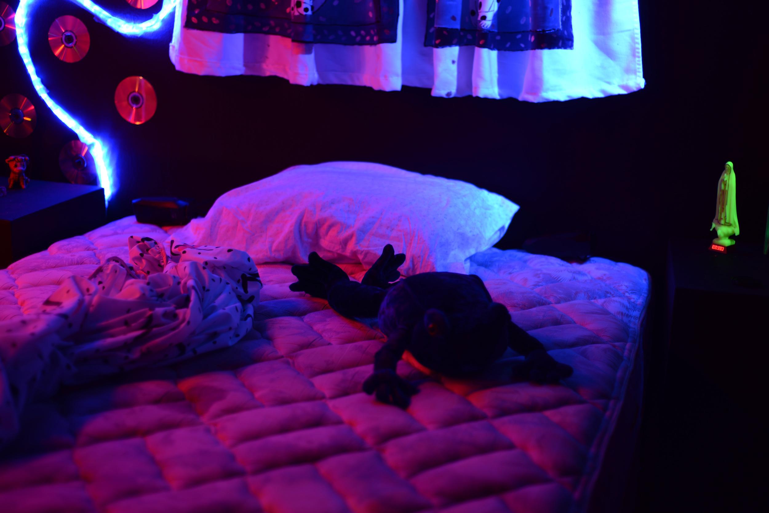 Dark-Rooms-Frog.jpg