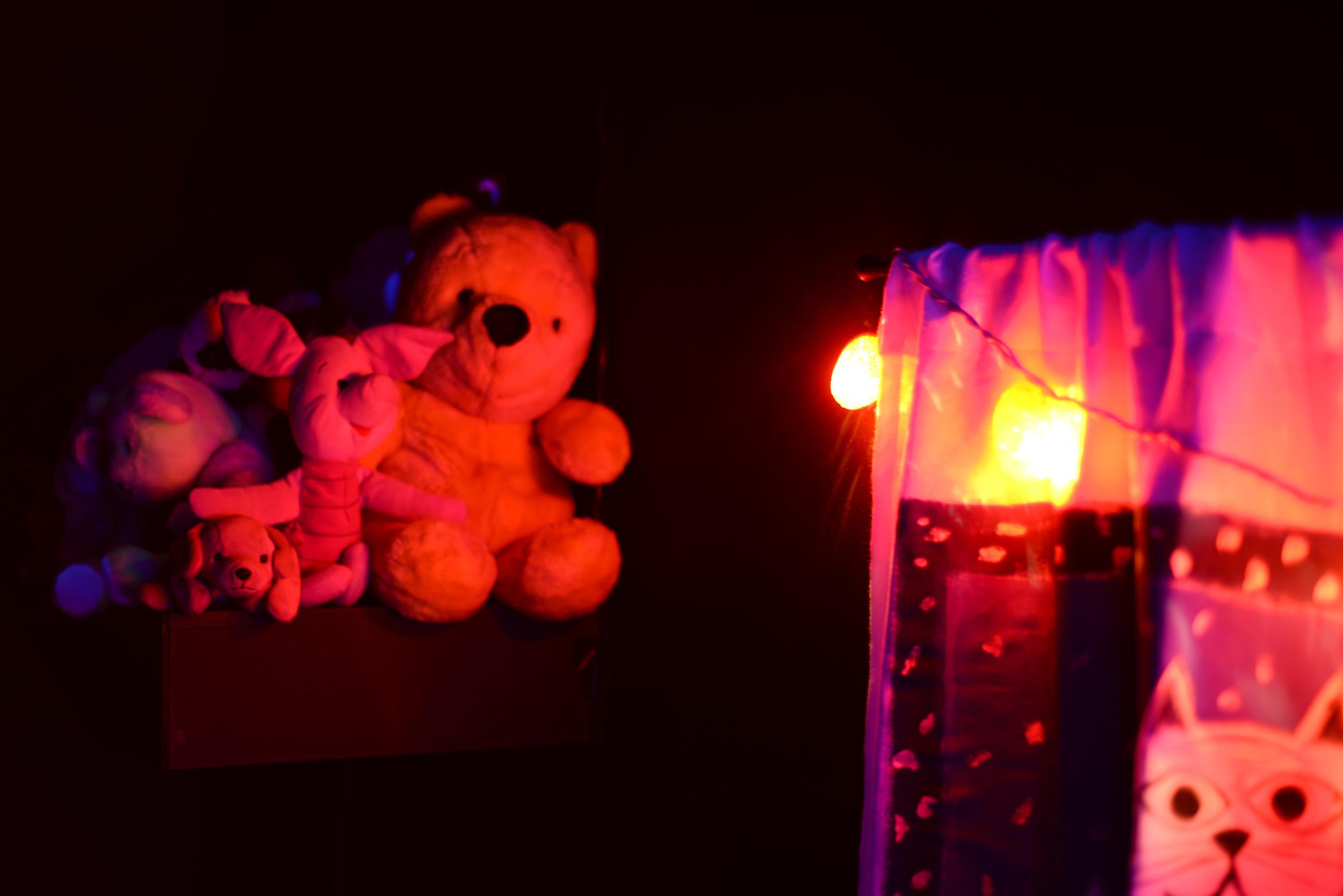 Dark-Rooms-Toy-Shelf-2.jpg