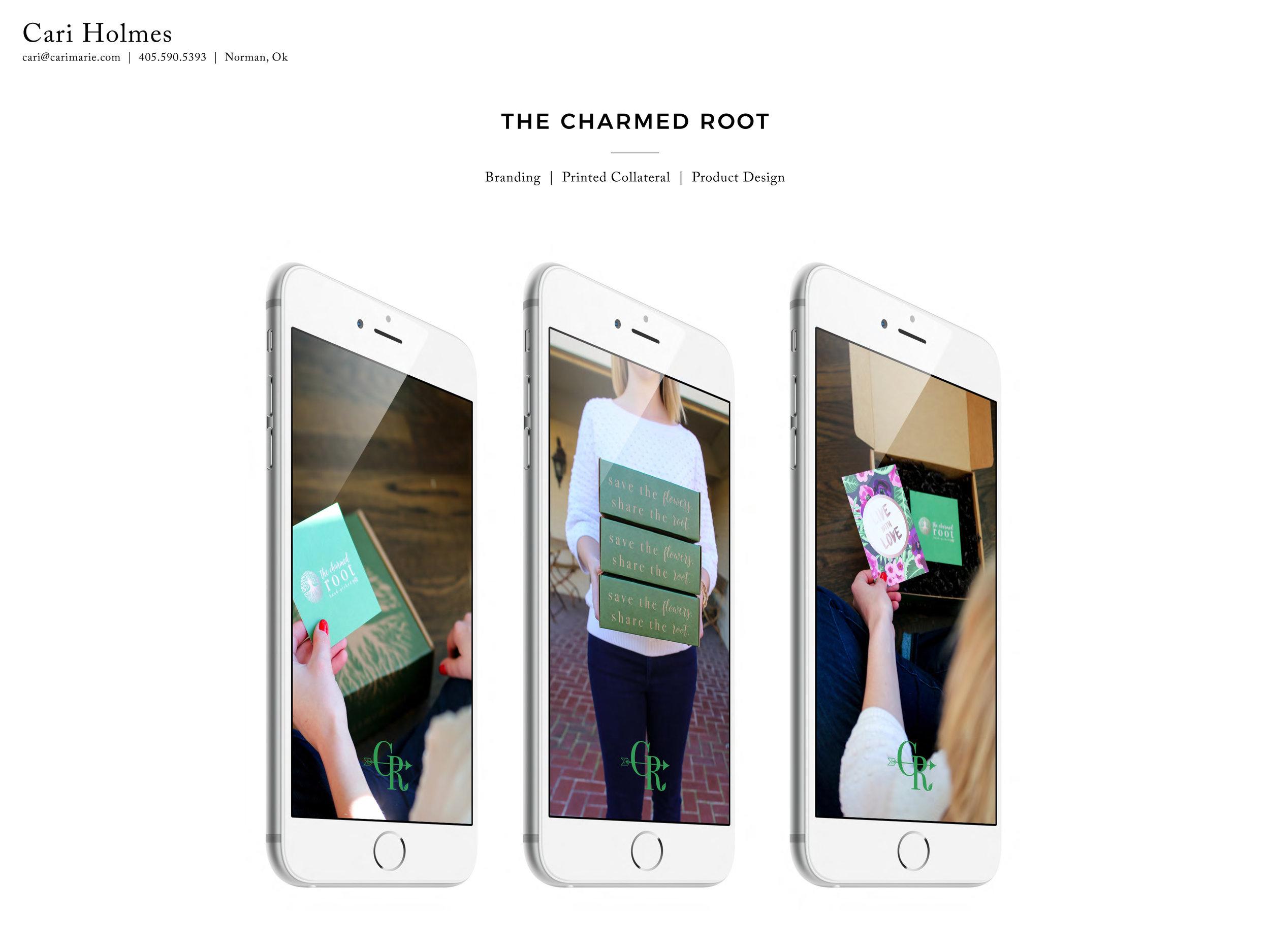 cari_m_holmes_portfolio_2017-5 copy.jpg