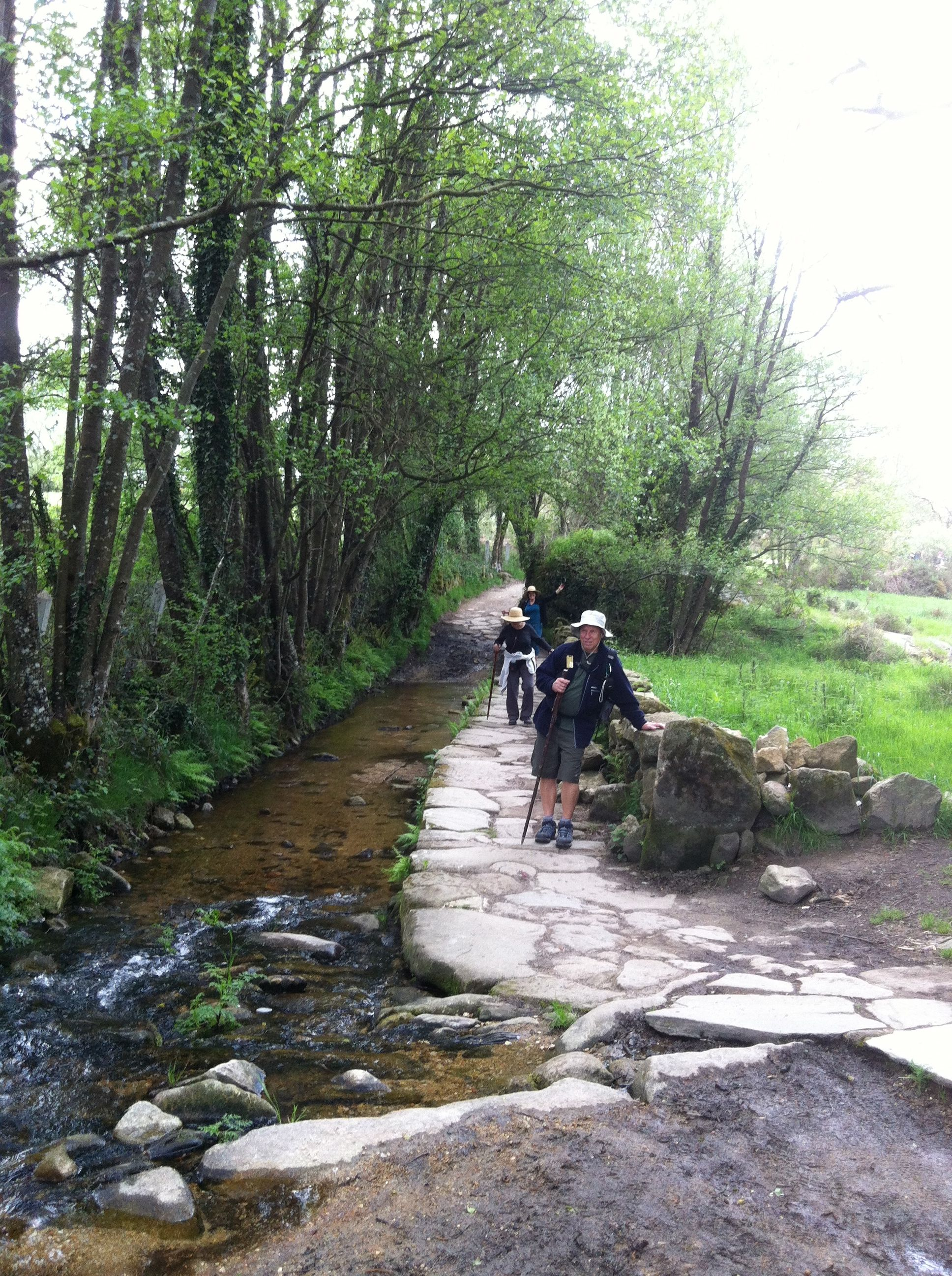 On the Camino!
