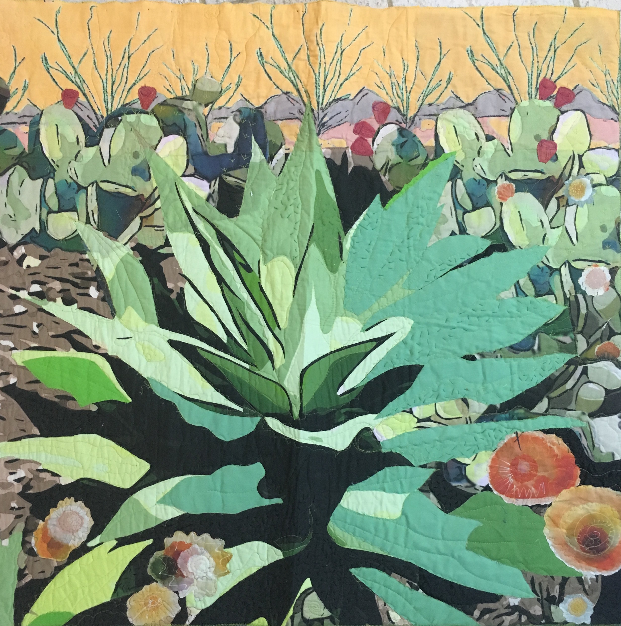 Agave with Ocotillo