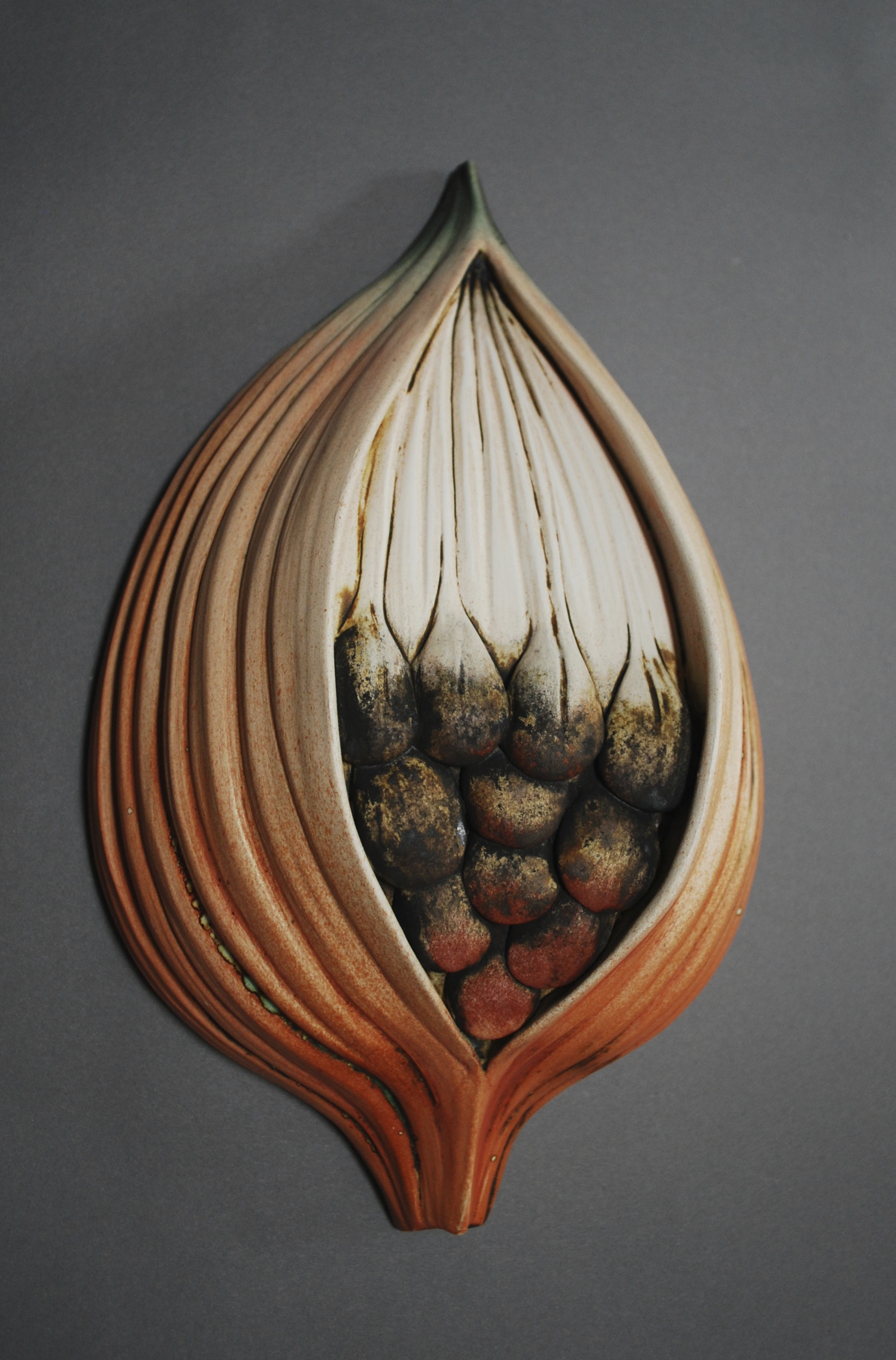 inspired by the milkweed pod