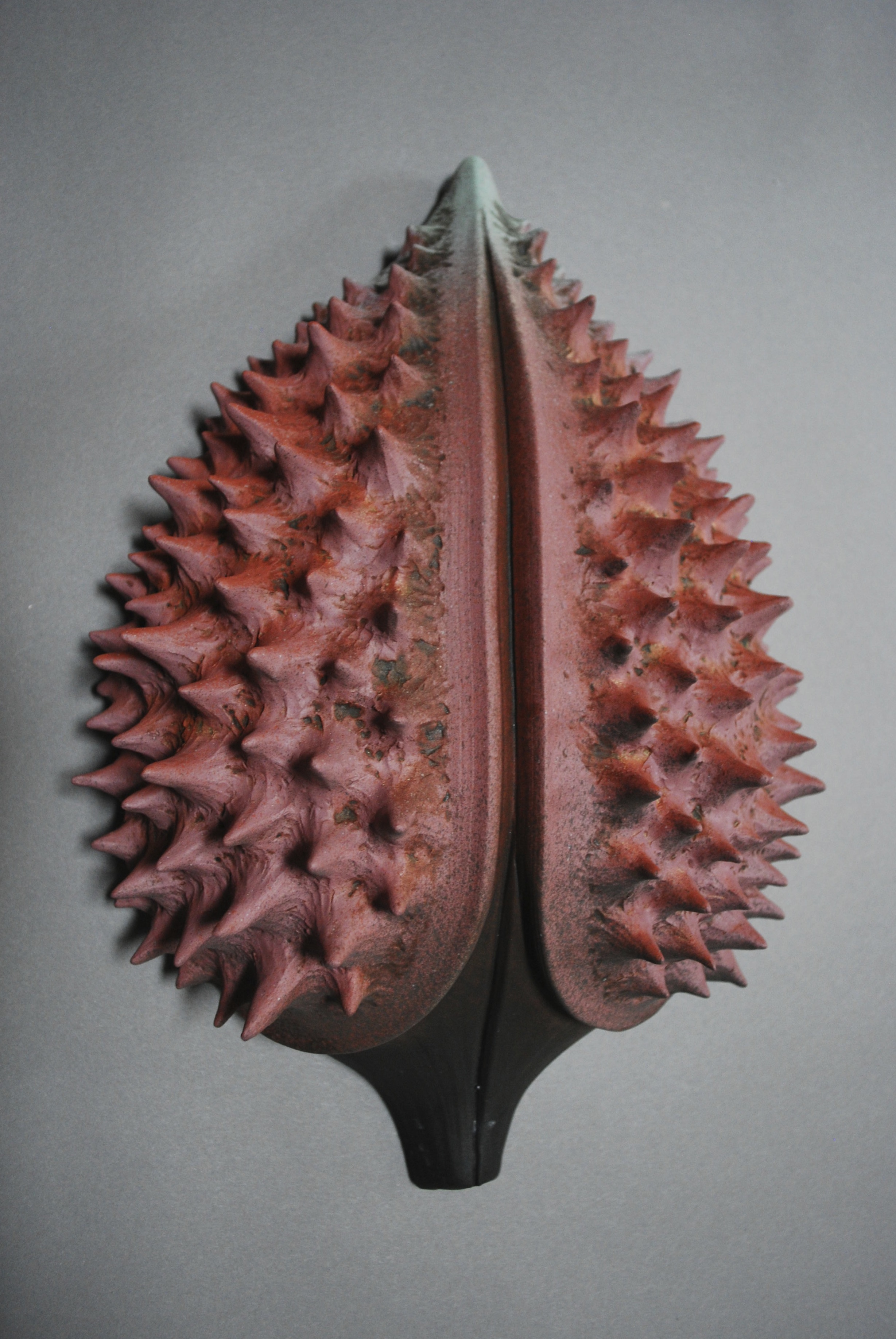 Inspired prickly pods