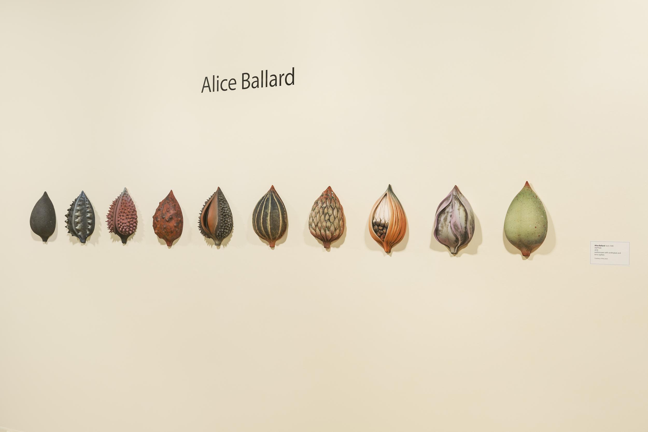 10 Half-Pods, an installation at the GCMA, Alice Ballard's solo show georgeleephotography.com