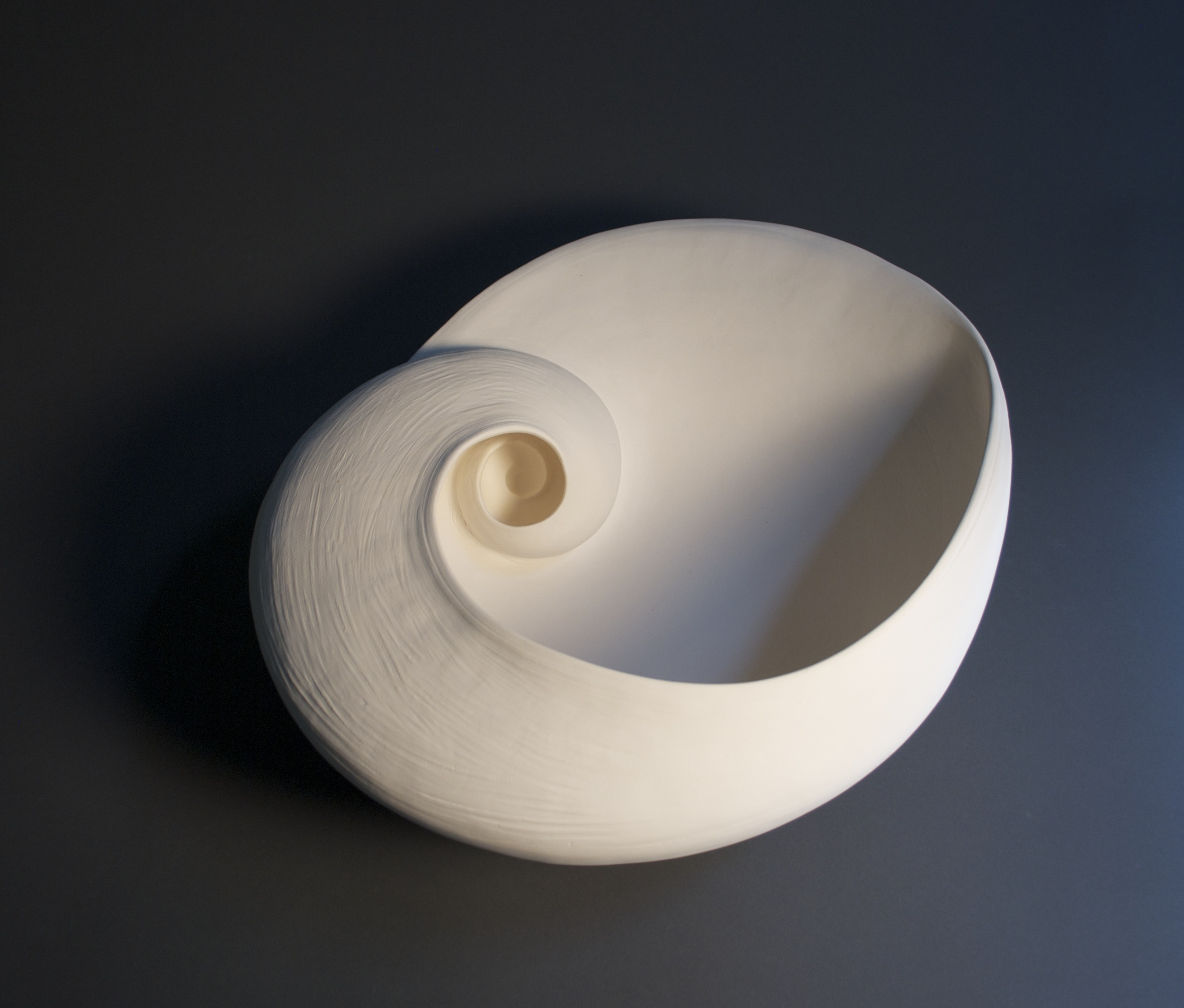 """Inspired by a tiny moon shell.... an element of my floor installation """"A Walk Remembered..."""""""