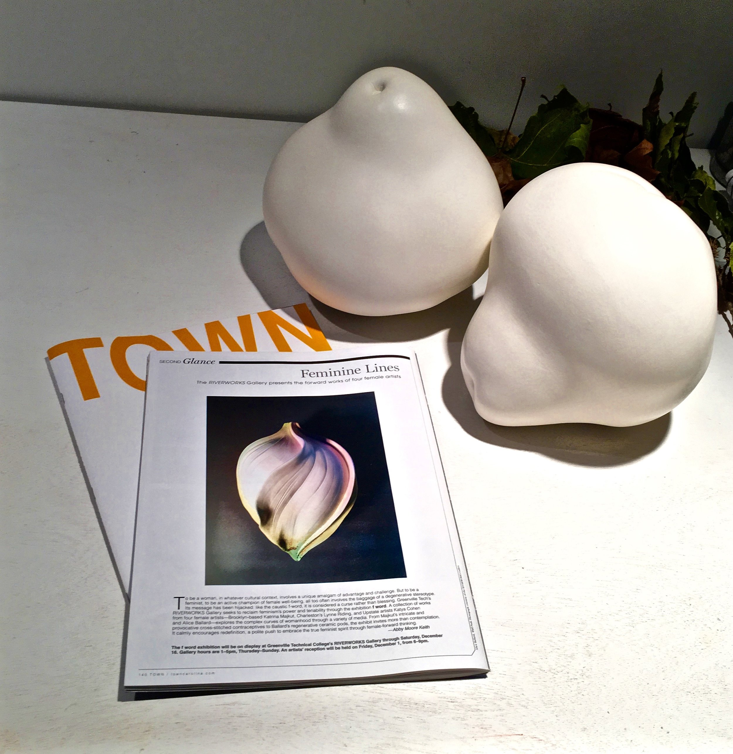 "The December 2017 issue of TOWN magazine featured an excellent article about ""the ""F"" word"", an exhibition currently at the Riverworks Gallery in Greenville, SC.  The image is of a Wall Pod from a 6 Pod Triangle in the exhibition along with the work of Katya Cohen, Katrina Majkut and Lynne Riding,  The show ends December 16th.  For gallery hours check out this link.  http://www.gvltec.edu/riverworks/"