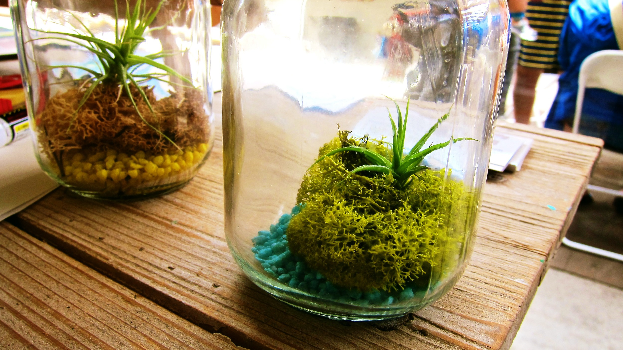 One of the craft workshops was a mason jar terrarium. Click  here  for more photos