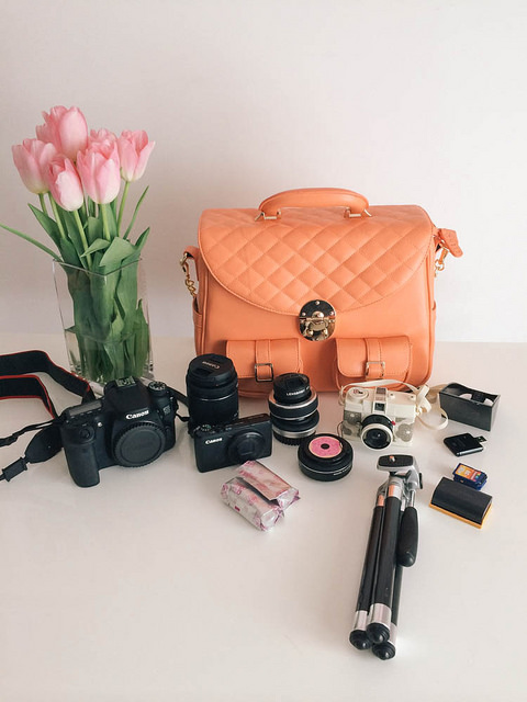 In my camera bag-  Canon 70D ,  18mm lens ,  Lensbaby ,  Powershot S95 , extra film,  pancake lens ,  Diana camera , mini tripod, extra SD cards, extra battery,  light bounce and SD card reader. I also fit my iPad Mini in the back pocket. So much room!