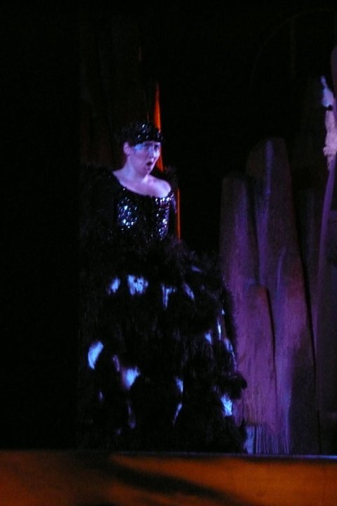 Magic Flute (Queen of the Night)