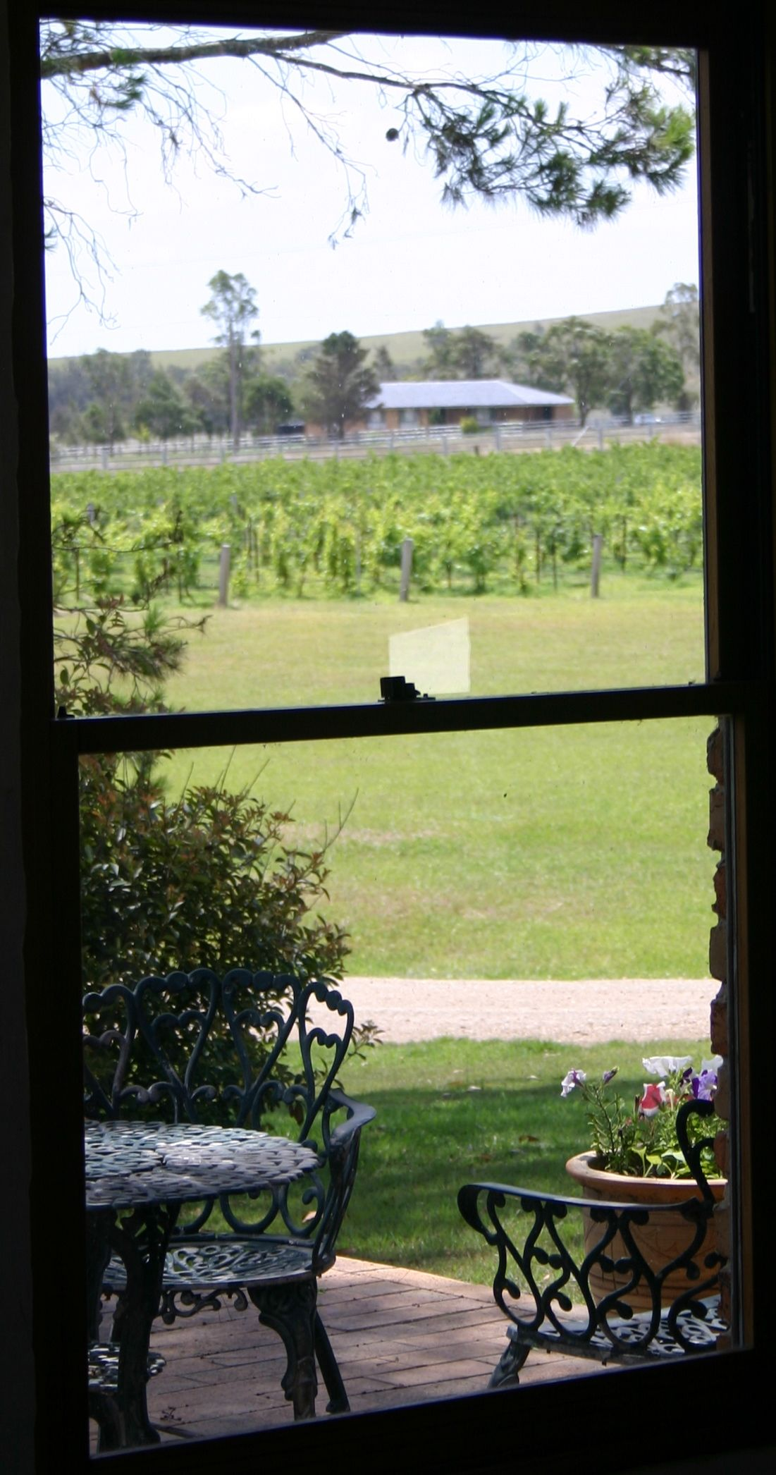 window tasting room1.jpg